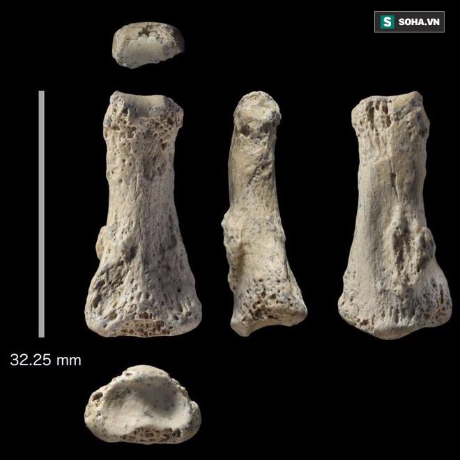 Hóa thạch 85.000 năm tuổi ở Saudi Arabia ẩn chứa bí mật mới của loài người - Ảnh 1.