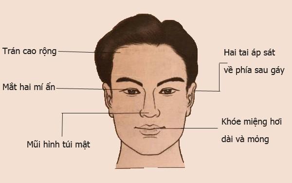 cac-loai-tuong-bien-cach-trong-nhan-tuong-hoc-p1-5