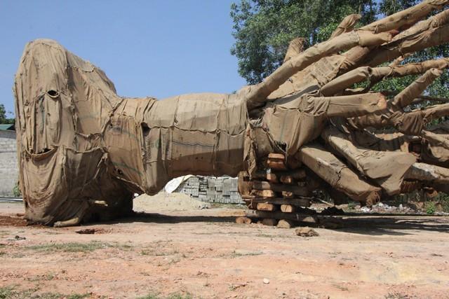 Ba cây khủng tàng hình qua Đà Nẵng trước khi bị bắt giữ tại Huế - Ảnh 3.