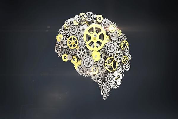Muốn não phát huy tối đa sức mạnh thì nhất định không được bỏ qua 5 thói quen này - Ảnh 1.