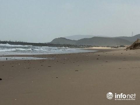 Thực hư tin đồn cá chết trắng bờ biển gần khu vực Formosa - Ảnh 3.