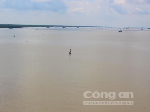 'Vua' săn cá ngát trên sông Hàm Luông - Ảnh 1.