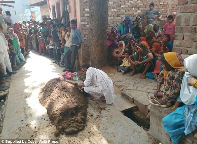 Phủ phân bò khắp người để chữa rắn cắn, người phụ nữ thiệt mạng lúc nào không hay - Ảnh 2.