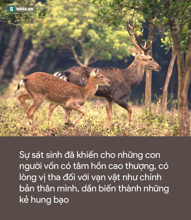 Lỡ tay bắn chết con linh dương, 1 thứ được phát hiện sau đó khiến thợ săn lập tức bỏ nghề - Ảnh 2.