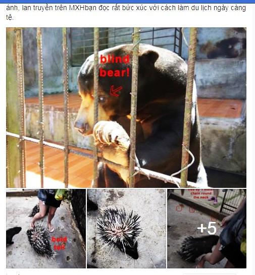 Khách nước ngoài tố Khu du lịch Prenn Đà Lạt ngược đãi động vật - Ảnh 2.