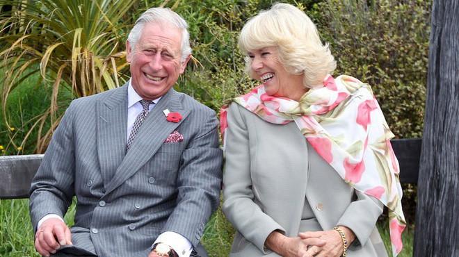 Công nương Diana có mọi thứ trừ điều này và đó là lý do trái tim Thái tử Charles không hướng về bà - Ảnh 3.