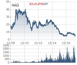 Cổ phiếu HAG liên tục dò đáy, bầu Đức đăng ký mua 20 triệu cổ phiếu  - Ảnh 2.