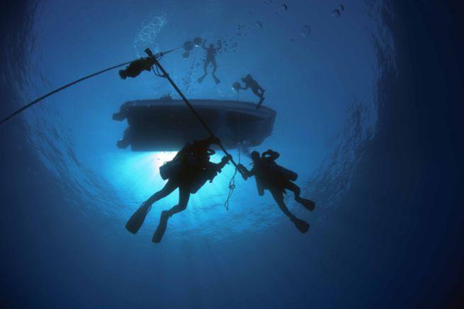 Bí ẩn sinh vật tại đáy biển Bermuda: Giới khoa học chưa từng thấy bao giờ - Ảnh 2.