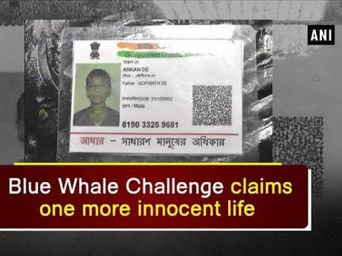 Những người đã thiệt mạng bởi trò chơi nguy hiểm cá voi xanh trên khắp thế giới - Ảnh 8.
