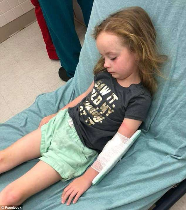 Chỉ vì một vết côn trùng cắn nhỏ xíu trên đầu, bé 5 tuổi bị liệt và không thể nói suốt 12 giờ - Ảnh 1.