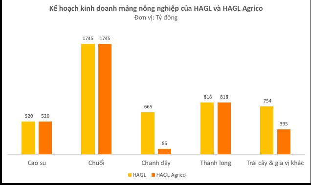 Bầu Đức: HAGL Agrico sẽ vĩ đại. Tôi đang làm cực kỳ có thể, cổ đông hãy chờ đợi - Ảnh 2.