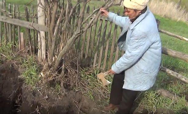Đào được hộp sọ trong vườn, người đàn ông phát hiện sự thật kinh hoàng - Ảnh 2.