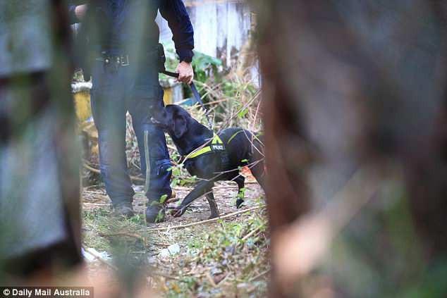 Úc: Dọn dẹp căn nhà bỏ hoang 10 năm, nhân viên vệ sinh phát hiện bí mật kinh hoàng trong tấm thảm - Ảnh 4.