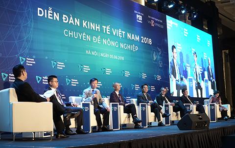 Người bán 400 tấn cam/ngày ở chợ Long Biên: Thương lái TQ biết VN có gì ngon nhất - Ảnh 1.