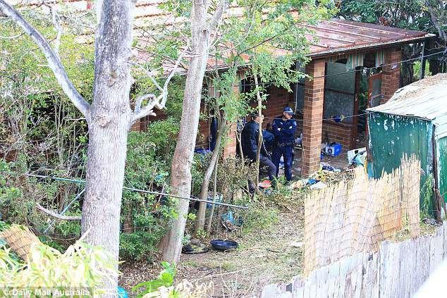 Úc: Dọn dẹp căn nhà bỏ hoang 10 năm, nhân viên vệ sinh phát hiện bí mật kinh hoàng trong tấm thảm - Ảnh 7.