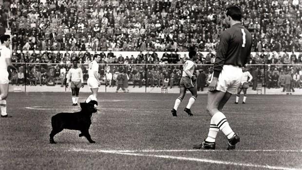 Lịch sử World Cup 1962: Ngày hội bóng đá thế giới bị lãng quên của FIFA - Ảnh 2.
