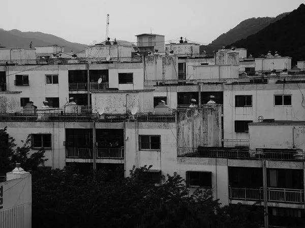 """Vụ án """"tẩy não"""" kinh động Nhật Bản: Dụ dỗ người tình lừa đảo, tiếp tay giết người rồi khiến cả gia đình tàn sát lẫn nhau dã man - Ảnh 3."""