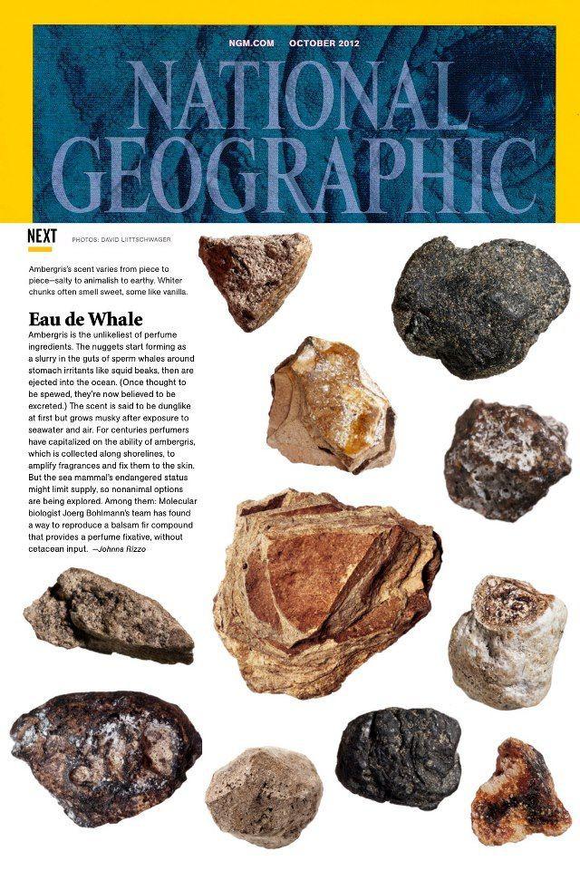 Bí ẩn hai viên đá cực đẹp tỏa hương thơm, trả 5 tỉ cũng không bán ở Gia Lai! - Ảnh 1.