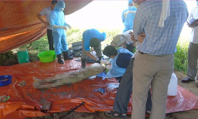 Vụ khai quật thi thể nữ kế toán: Người lạ rải tờ rơi đầy đường trong ngày đưa tang - Ảnh 5.