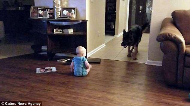 Đặt camera trong phòng, cha mẹ choáng khi phát hiện ra con gái có bạn chơi đêm - Ảnh 6.
