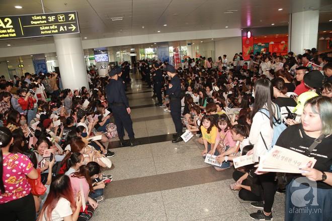 Quả bom sex Hyuna cùng dàn mỹ nam của Highlight chật vật di chuyển giữa biển fan Việt Nam - Ảnh 1.