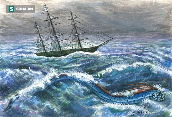 Ngư dân Chile hí hửng mừng hụt khi bắt được sinh vật có ngoại hình hệt như thủy quái - Ảnh 5.