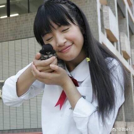 Số phận mỹ nhân phim thần tượng Đài Loan: Người đoản mệnh ngay đỉnh cao sự nghiệp, kẻ mang danh hồ ly giật bồ xuống sắc vì dao kéo - Ảnh 17.