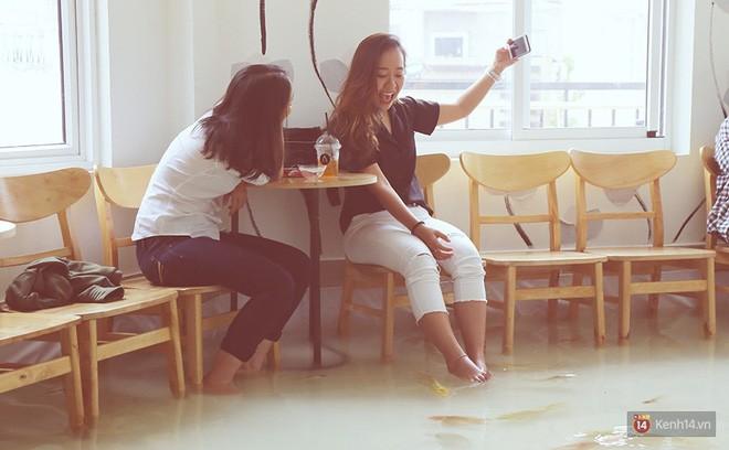 Chủ quán cafe Sài Gòn cho khách cởi giày, ngâm chân dưới hồ cá: Có nội quy cho khách, chúng tôi còn cử 8 nhân viên túc trực 24/24 theo dõi cá - Ảnh 12.