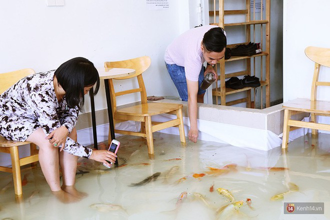 Chủ quán cafe Sài Gòn cho khách cởi giày, ngâm chân dưới hồ cá: Có nội quy cho khách, chúng tôi còn cử 8 nhân viên túc trực 24/24 theo dõi cá - Ảnh 13.