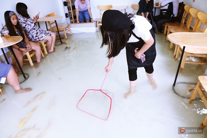 Chủ quán cafe Sài Gòn cho khách cởi giày, ngâm chân dưới hồ cá: Có nội quy cho khách, chúng tôi còn cử 8 nhân viên túc trực 24/24 theo dõi cá - Ảnh 17.