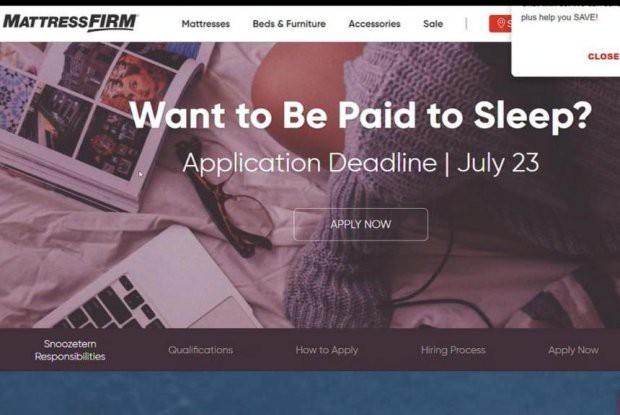 Công việc trong mơ: Được trả tiền để ngủ - Ảnh 1.