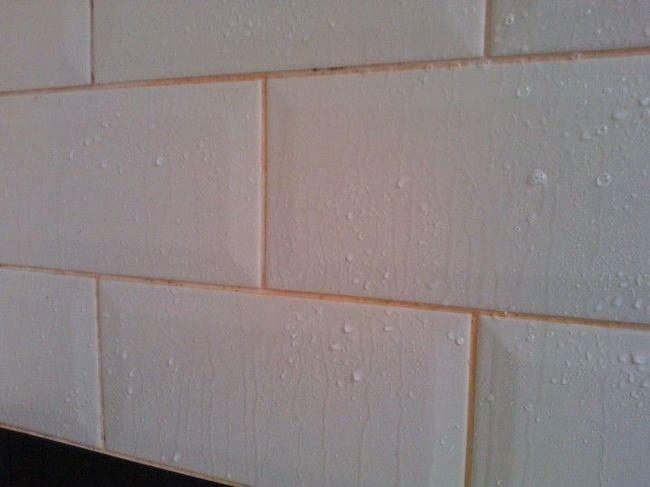 Nấm mốc trong nhà có những màu sắc này thì phải xử lý càng nhanh càng tốt, đừng để hỏng nhà và hại cả sức khỏe - Ảnh 12.