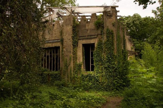 Bên trong khu vườn bị bỏ hoang ở Paris, nơi 100 năm trước con người từng bị đem ra triển lãm, mua vui chẳng khác gì ở sở thú - Ảnh 19.