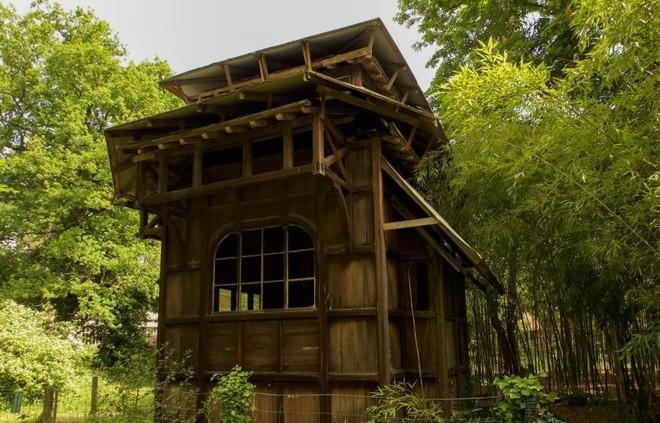 Bên trong khu vườn bị bỏ hoang ở Paris, nơi 100 năm trước con người từng bị đem ra triển lãm, mua vui chẳng khác gì ở sở thú - Ảnh 9.