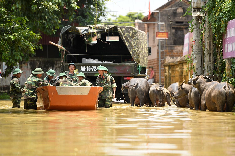 Sau 1 tuần mưa, người Hà Nội dùng thuyền tự chế, bơi trong dòng nước ngập ao bèo về nhà - Ảnh 13.