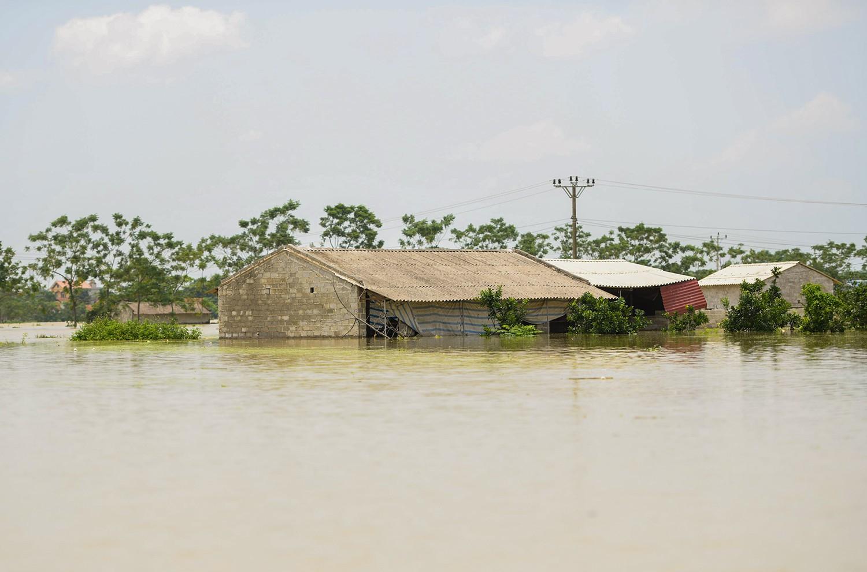 Sau 1 tuần mưa, người Hà Nội dùng thuyền tự chế, bơi trong dòng nước ngập ao bèo về nhà - Ảnh 24.