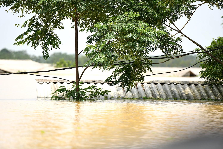 Sau 1 tuần mưa, người Hà Nội dùng thuyền tự chế, bơi trong dòng nước ngập ao bèo về nhà - Ảnh 25.