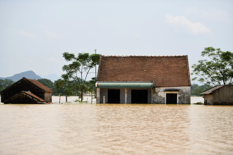 Sau 1 tuần mưa, người Hà Nội dùng thuyền tự chế, bơi trong dòng nước ngập ao bèo về nhà - Ảnh 26.