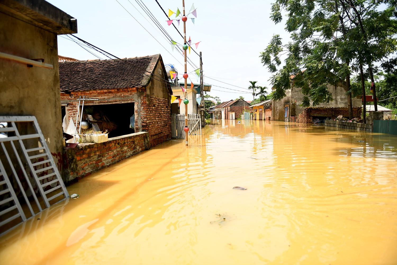 Sau 1 tuần mưa, người Hà Nội dùng thuyền tự chế, bơi trong dòng nước ngập ao bèo về nhà - Ảnh 3.