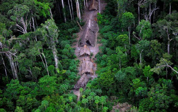 Cận cảnh cuộc sống trong rừng Amazon của các bộ lạc biệt lập với thế giới hiện đại - Ảnh 10.