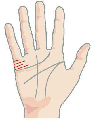 Đưa tay lên và soi những đường chỉ nhỏ xíu này xem, bạn sẽ có câu trả lời về cuộc sống hôn nhân của mình bây giờ và mai sau - Ảnh 6.