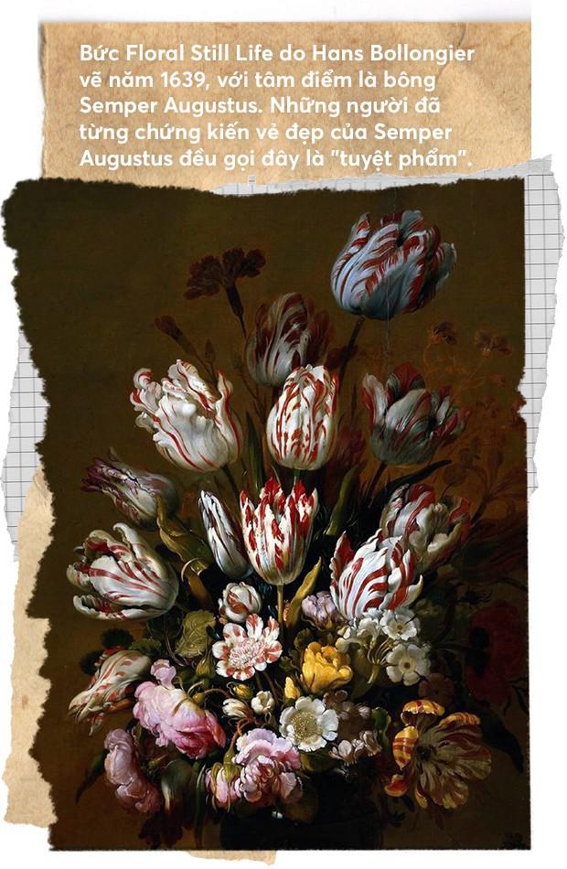 Một khóm hoa tulip dính virus đã tạo nên bong bóng tài chính nổi tiếng nhất lịch sử nhân loại như thế nào? - Ảnh 4.