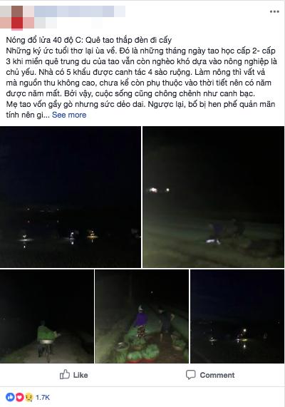 Nhìn cảnh các mẹ lọ mọ rọi đèn đi cấy giữa đêm tránh cái nóng 40 độ này mới biết những bác nông dân vất vả thế nào - Ảnh 1.