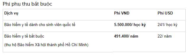 Học phí cao ngất ngưởng của trường RMIT Việt Nam: Chỉ có con nhà giàu mới theo học được! - Ảnh 3.