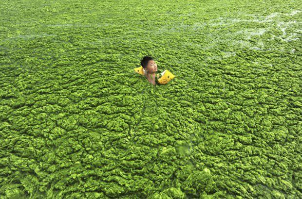 16 bức ảnh về thực trạng ô nhiễm môi trường khiến thế giới giật mình - Ảnh 12.