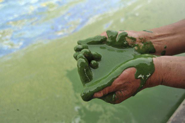 16 bức ảnh về thực trạng ô nhiễm môi trường khiến thế giới giật mình - Ảnh 15.