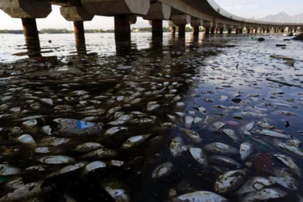 16 bức ảnh về thực trạng ô nhiễm môi trường khiến thế giới giật mình - Ảnh 16.