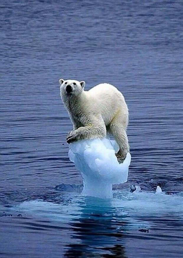 16 bức ảnh về thực trạng ô nhiễm môi trường khiến thế giới giật mình - Ảnh 4.
