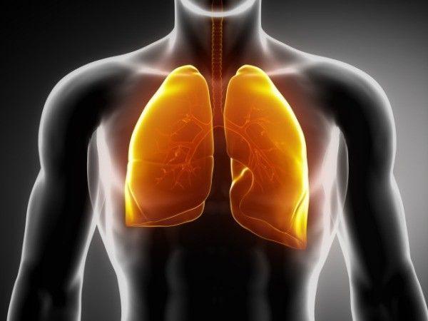 """Những """"thủ phạm"""" giấu mặt gây ung thư phổi - Ảnh 1."""