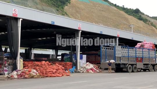 VIDEO điều tra: Đường đi nông sản Trung Quốc nhái Đà Lạt - Ảnh 4.
